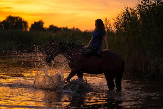 Uma garota esbelta em um cavalo está ao pôr do sol, um cavalo está de pé em um lago, cuidado e andar com o cavalo, força e beleza