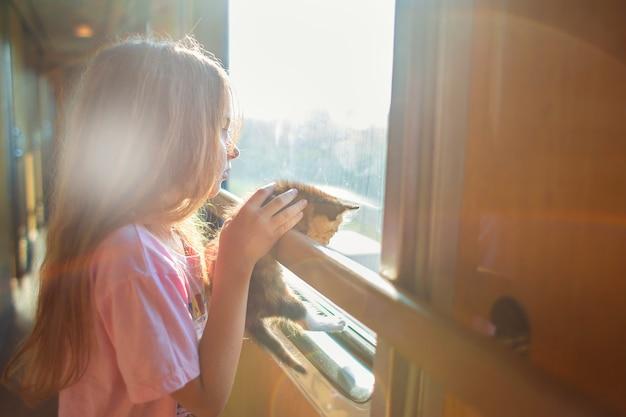 Uma garota está andando em um vagão de compartimento com um gatinho. viajar de trem com animais. uma criança com um gato olha pela janela de um trem