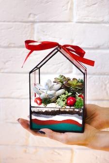 Uma garota segura uma florariumov, forma de vidro com suculentas, pedras e areia, decorada com fitas de natal. presentes de natal para casa e escritório