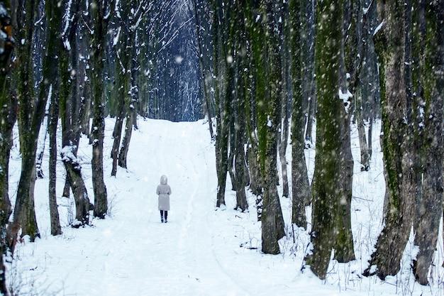 Uma garota solitária caminha no parque no inverno durante uma nevasca