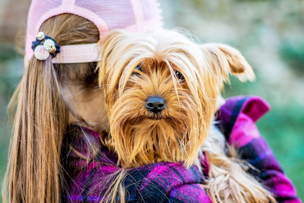 Uma garota usando um boné segura um pequeno cão de raça yorkshire terrier. crianças e animais