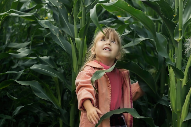 Uma garotinha em um milharal