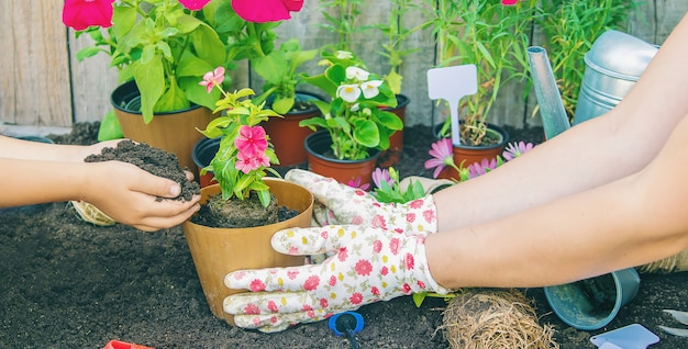 Uma garotinha está plantando flores.