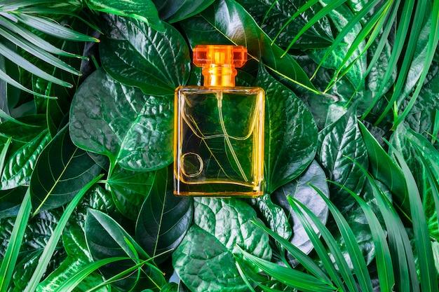 Uma garrafa de perfume e perfume natural em um fundo frondoso.
