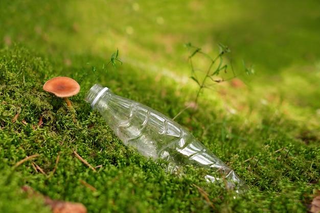 Uma garrafa de plástico em musgo da floresta com cogumelos em crescimento