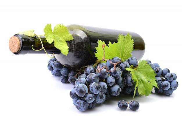 Uma garrafa de vinho isolada
