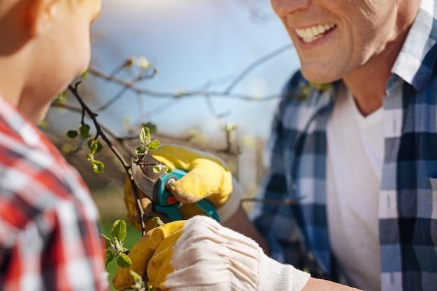 Uma geração masculina de camisas xadrez, cuidando de um jardim familiar e podando árvores frutíferas no quintal