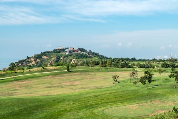 Uma grande pastagem no campo de golfe, qingdao, china
