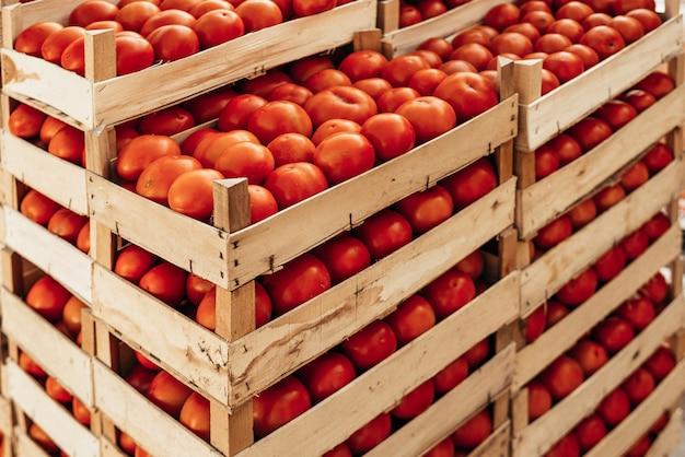 Uma grande pilha de cesta de tomate.