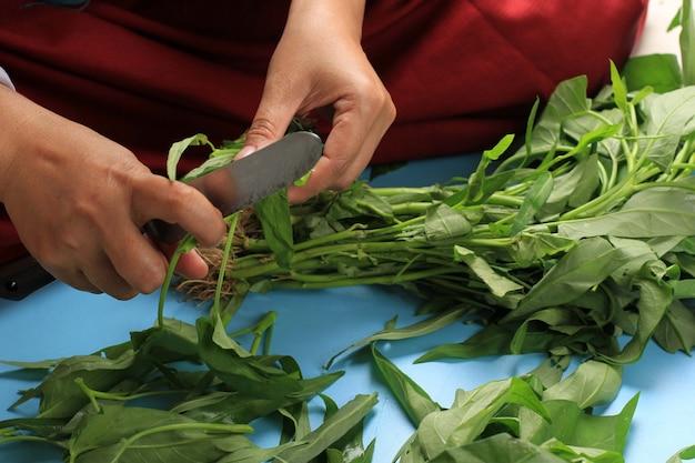 Uma haste feminina de corte de água com faca rústica