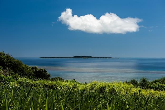 Uma ilha no horizonte, uma grande nuvem branca passando acima dela, oceano liso, vegetação verde-clara em primeiro plano.