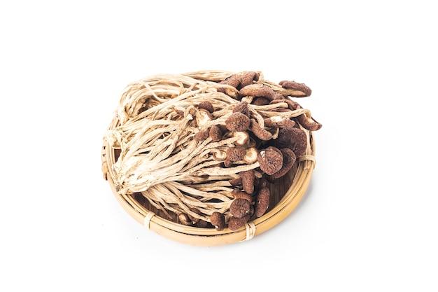 Uma imagem mostrando alguns cogumelos secos de salgueiro oriental,