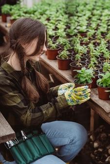 Uma jardineira com luvas de borracha está plantando mudas de flores em um vaso com uma ferramenta de jardim.