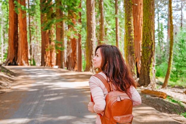 Uma jovem caminha no pitoresco parque nacional da sequóia, eua