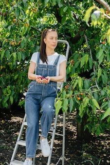 Uma jovem e bonita mulher de macacão e em uma escada segura uma cereja vermelha, madura e doce em suas mãos em um dia de verão.