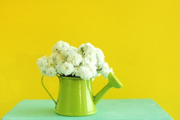 Uma lata molhando verde diminuta com um ramalhete das flores brancas em uma caixa de madeira azul. fundo amarelo brilhante.