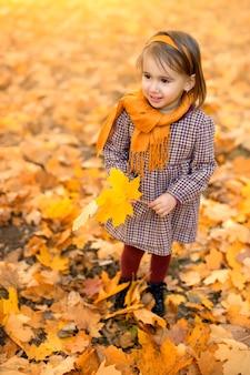 Uma linda menina de dois anos com uma folha de bordo de outono nas mãos
