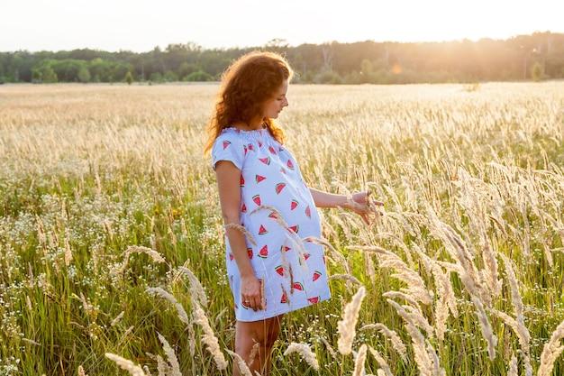 Uma linda mulher grávida em um lindo vestido está de pé no campo de trigo ao pôr do sol. sessão de fotos da família grávida na natureza.