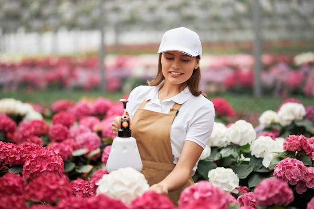 Uma linda mulher pulverizando hortênsias em flor