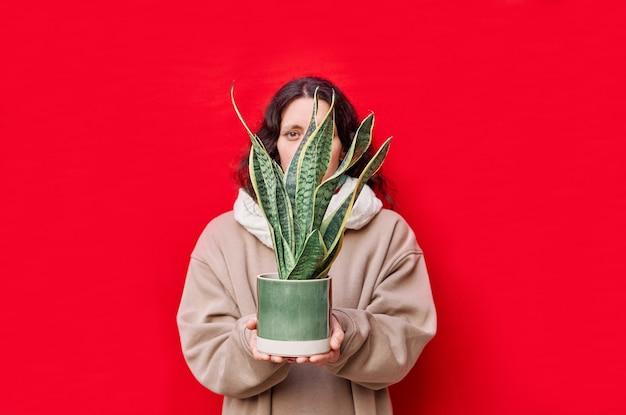 Uma linda mulher segurando um vaso com plantas cobras na parede vermelha