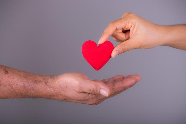 Uma mão dá um coração vermelho para uma mão ancião sênior. dia do coração do mundo.