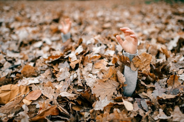 Uma mão de criança nas folhas