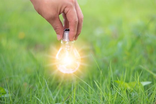 Uma mão de homem pegando a lâmpada de luz com luz gráfica comptuer, sucesso e inovação, conceito de ideia com grama verde e fundo desfocado da natureza