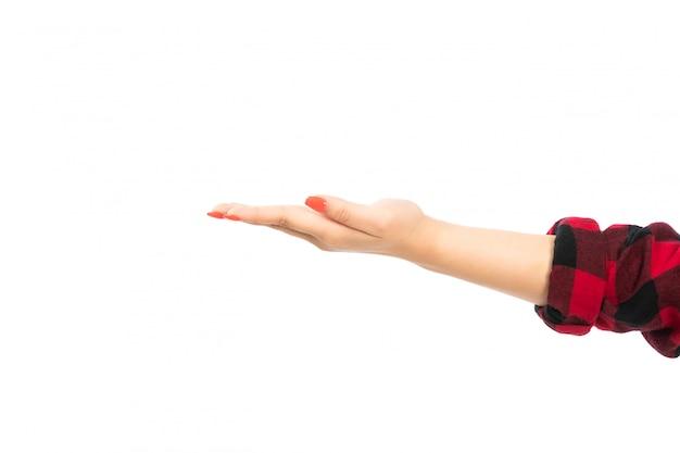 Uma mão feminina vista frontal na camisa xadrez preto-vermelho com a palma da mão aberta no branco