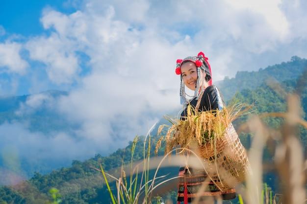 Uma menina bonita do fazendeiro com palha em campos de arroz no norte da tailândia.