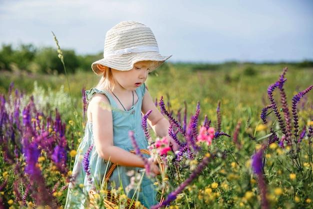 Uma menina com um chapéu panamá e um vestido azul em um campo de floração de verão reúne sálvia em uma cesta ...