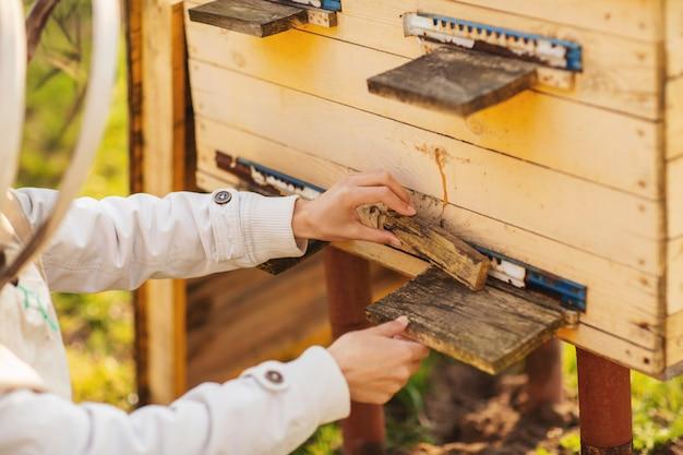 Uma menina jovem apicultor está trabalhando com abelhas e colmeias no apiário