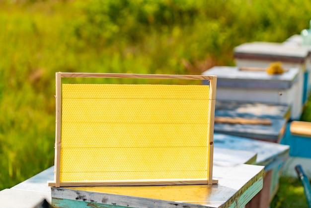 Uma moldura de madeira com favos de mel fica em uma colméia no quintal