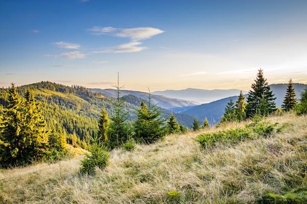 Uma montanha em harghita, no centro da romênia