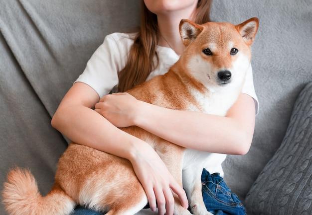 Uma mulher abraça shiba inu, um lindo cachorro vermelho, sentada em seu colo em casa.