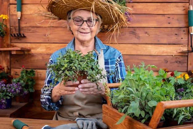 Uma mulher aposentada cuida das novas plantas aromáticas de seu jardim. fundo e mesa rústicos de madeira