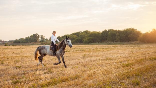 Uma mulher cavalga um campo a cavalo ao pôr do sol. treino desportivo, hipismo, caminhada, aluguer e venda de cavalos, rancho, munições. fundo bonito. amor e amizade ao animal, cuidado trote