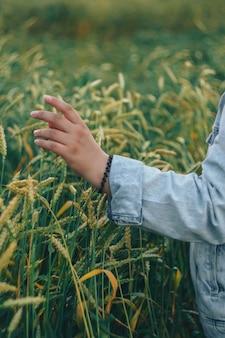 Uma mulher com uma jaqueta jeans toca espigas verdes de trigo com a mão 1