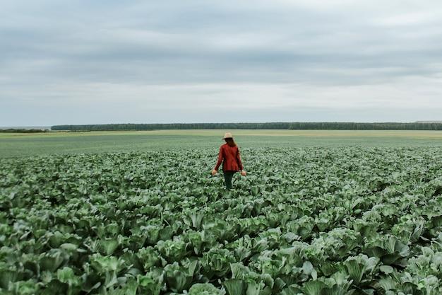 Uma mulher em um campo com repolho