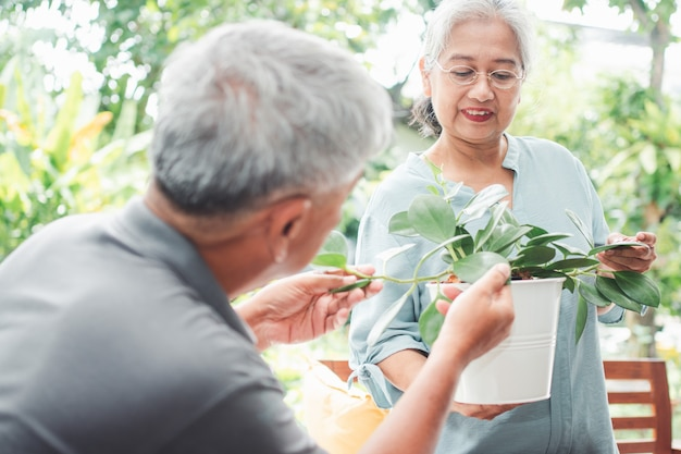 Uma mulher idosa asiática feliz e sorridente está plantando como um hobby após a aposentadoria com seu marido.