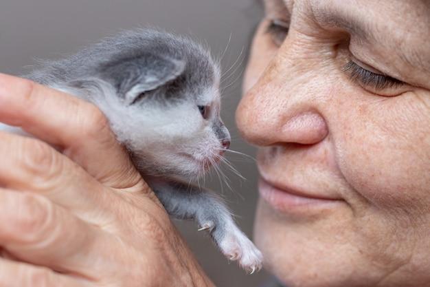 Uma mulher segura um gatinho recém-nascido perto do rosto