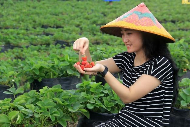 Uma mulher segurando morangos frescos na fazenda