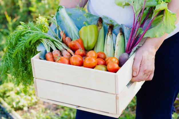 Uma mulher, vestida com uma blusa branca e calça preta, segura uma caixa de madeira com vários vegetais úteis