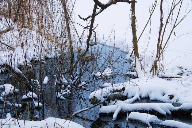 Uma nascente de primavera riacho azul em um dia frio de inverno nevado na floresta. o pato selvagem se esconde atrás dos galhos. linda paisagem de inverno
