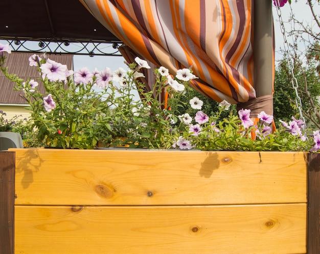 Uma nova caixa de vasos de madeira com flores de petúnia de jardim no fundo de uma varanda aberta com um dossel laranja.
