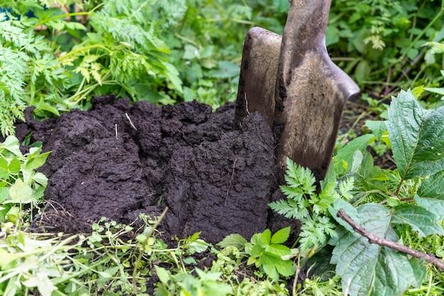 Uma pá está presa no solo ao lado de uma pilha de solo primavera verão verão agricultura