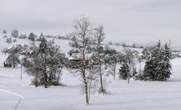 Uma paisagem especial de inverno