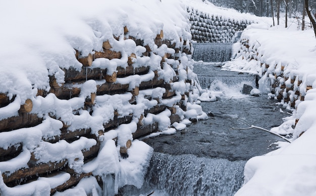 Uma parede de troncos envolve um pequeno riacho na floresta perto de árvores nuas