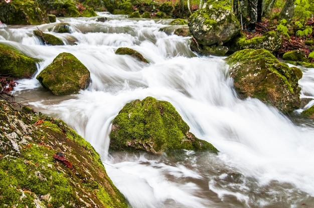 Uma pequena cachoeira na montanha flui sobre pedras cobertas de musgo e coberta de névoa. a samambaia cresce na costa