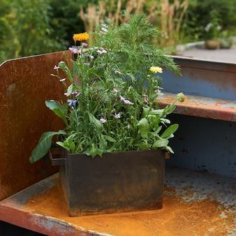Uma pequena caixa de ferro com flores silvestres plantadas em uma estrutura de ferro enferrujado