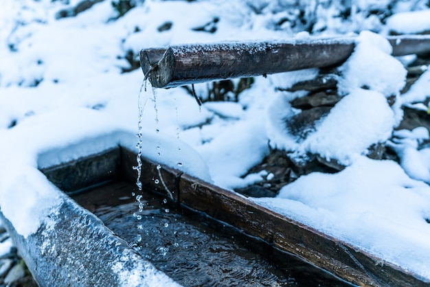 Uma pequena fonte rápida com água limpa e transparente entre neve pesada e floresta escura nas pitorescas montanhas dos cárpatos
